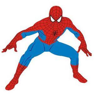 Painel Grande Amazing Spider Man Homem Aranha Agachado com 75 cm  - Unidade