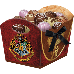 Cachepot Médio Harry Potter 8 unidades