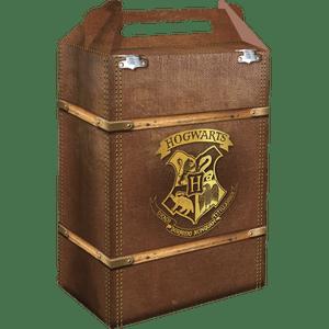Caixa Surpresa Harry Potter 8 unidades