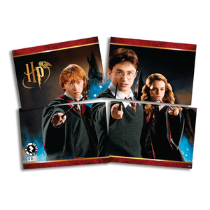 Painel 4 Laminas Harry Potter 126cmx88cm